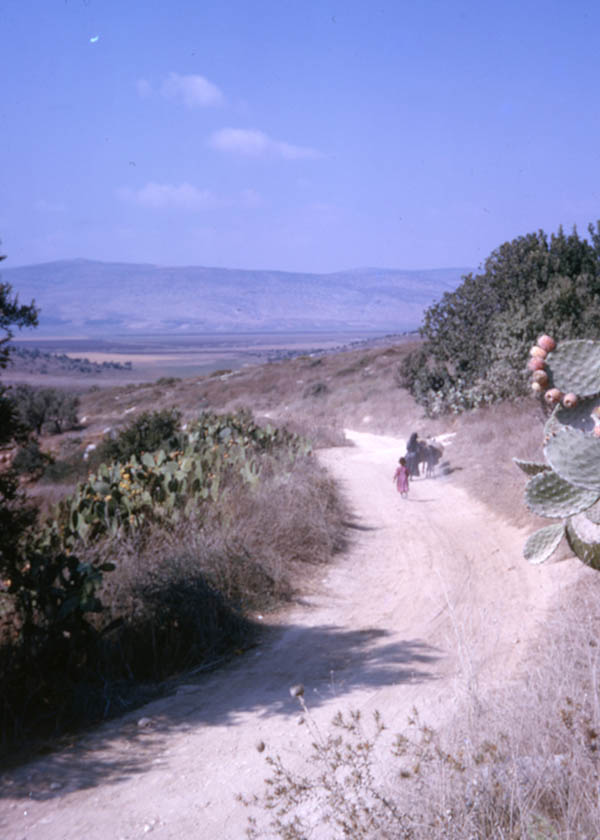'A country track near Nazareth'
