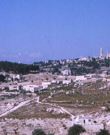 Hillside scene, Jerusalem